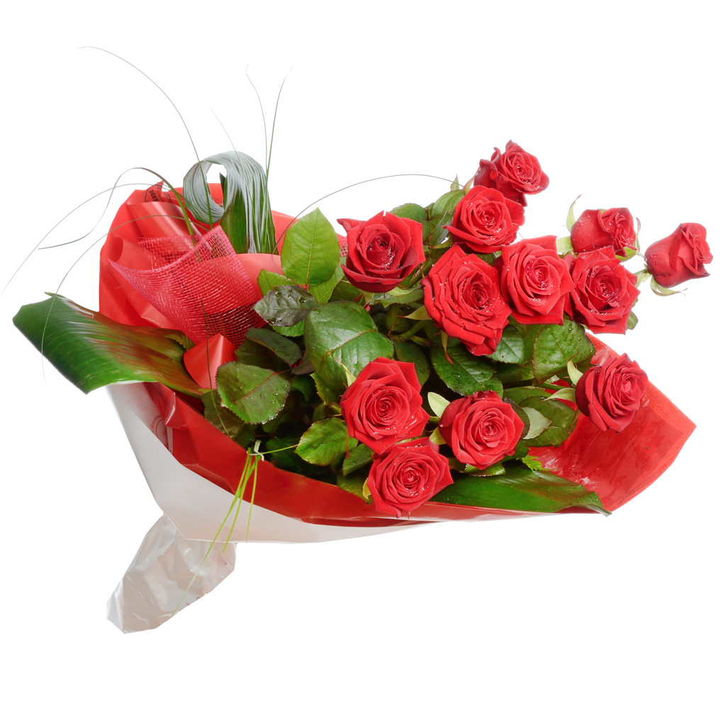 Dodici  rose rosse
