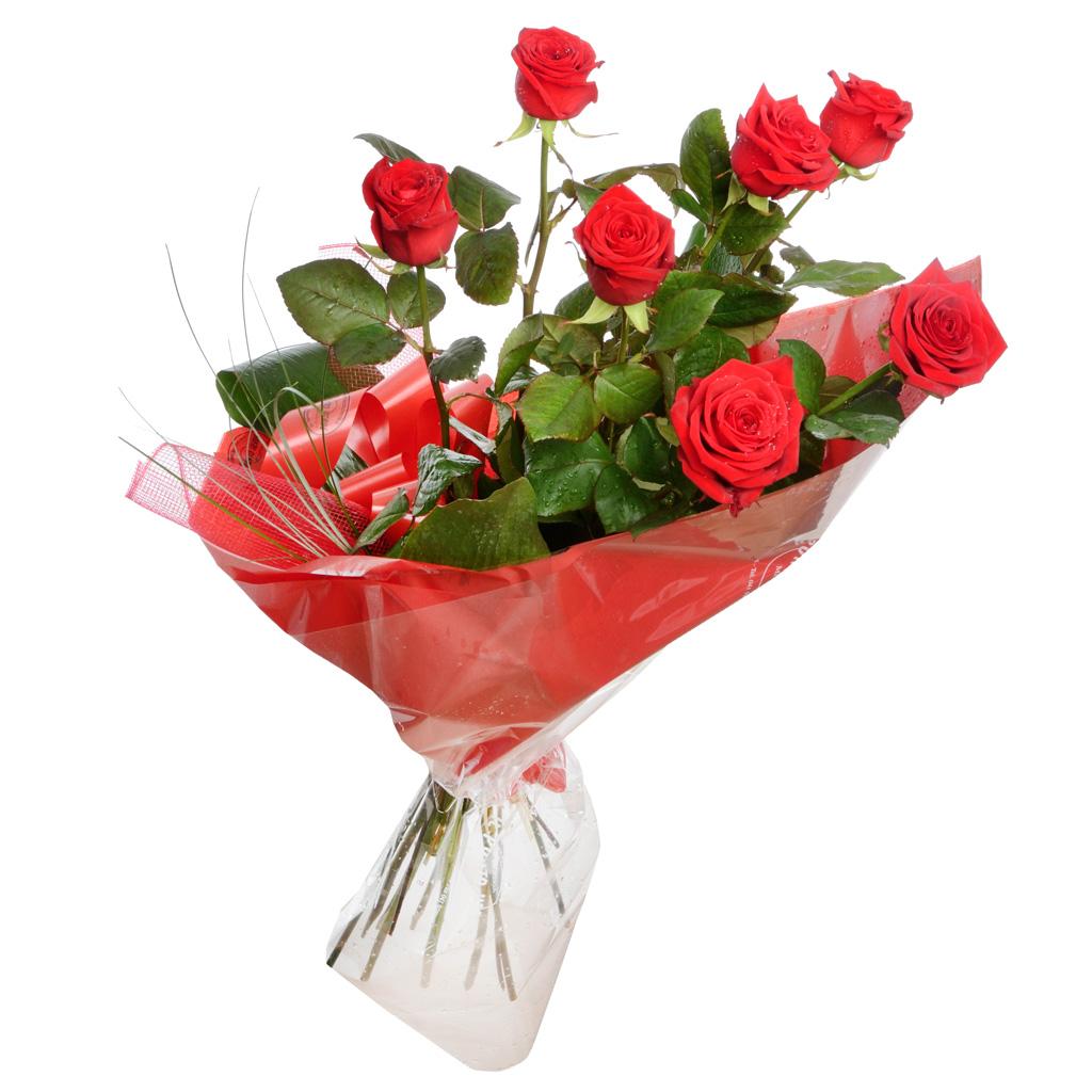 Sette rose rosse