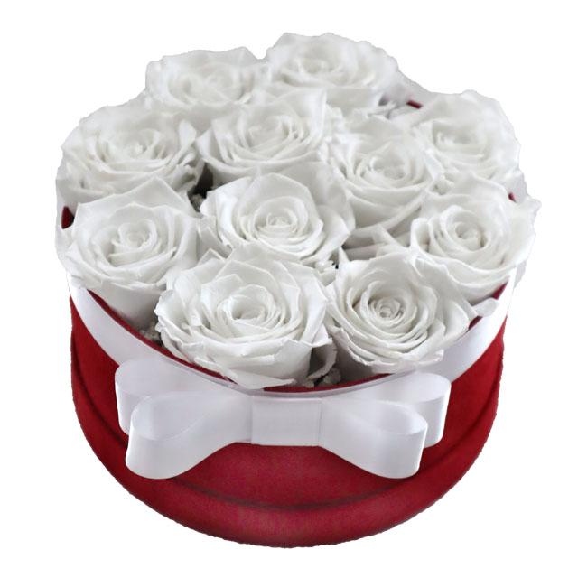 Scatola  rose stabilizzate