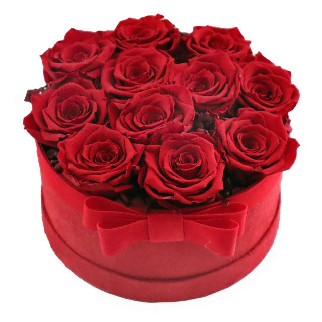 Rose rosse stabilizzate in scatola
